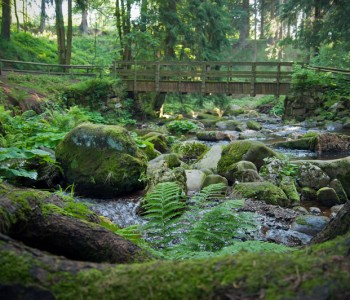 Harz unter Tage… Familienentdeckungstour mal anders